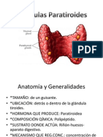 Glandula Paratiroides Camilo Barrios