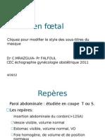 Abdomen Foetal