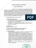 Raport de Expertiza Contabila - Fuziune ROSADA Cu GP & Company
