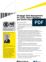 FinalfinalStrategic Risk Management Flyer