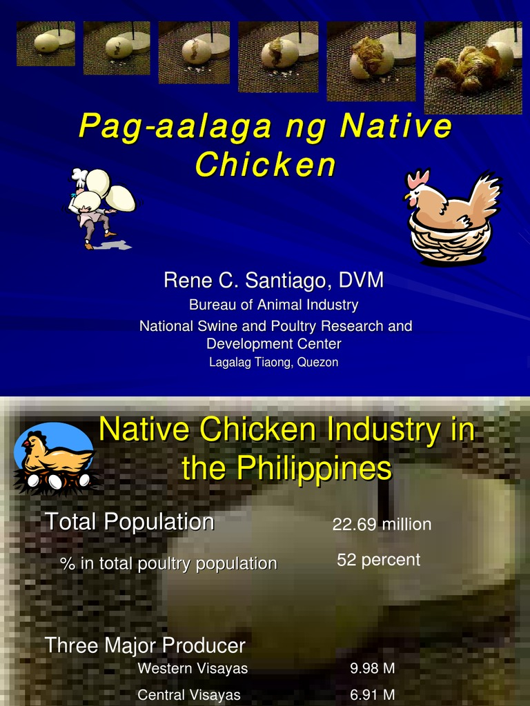 literature about chicken in the philippines Backyard and commercial piggeries in the philippines:  (see the review of the literature in the next section) in the philippines, what is ironic is that while hog .