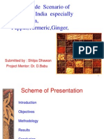 Project Ppt on Spices