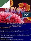 Anticorpos-estrutura enfermagem