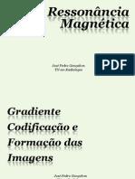 6_GRADIENTE+CODIFICACAO_E_FORMACAO[1]