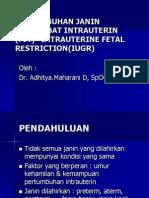 Pertumbuhan Janin Terhambat Intrauterin (Pjt)=Intrauterine