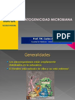 Patogenicidad Obstetricia