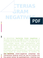 Exp. Bacterias Gram Negativas