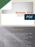 Biologia  4º B
