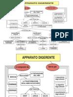 Mappa Digestione