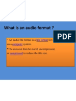 What is an Audio Format