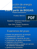 ESM Biogas