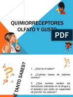 Quimiorreceptores