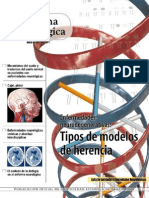 Enfermedades Neurodegenerativas Tipos de Modelos de Herencia by Bros