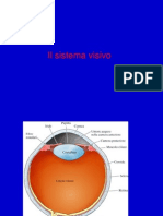 Il Sistema Visivo Biomed