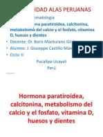 Hormona Para Tiro Idea, Calcitonina Metabolismo Del Calcio