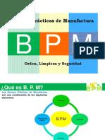 BPM  2011 Modificado