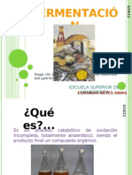 fermentacin-101113143711-phpapp02