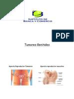Tumores Genitales Brochure!!