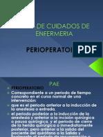 Plan de Cuidados de Enfermeria Pre Opera to Rio