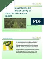 Situacion Industria Aceite Oliva en Chile