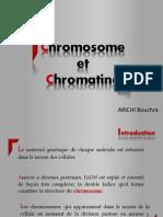 Chromosome Et Chromatine