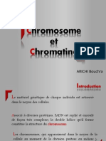 Chromosome Et Chromatine