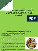 Trocas Nutricionais Entre o Organismo Dos Animais e o Meio