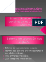 sistema de secreción 6
