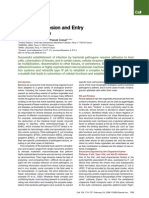Bacterial Adhesion and Entry