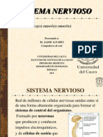 generalidades sistema nervioso