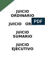 INDICE JUICIO   ORDINARIO