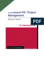 P6ReferenceManual_1