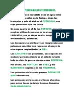 LA RESPIRACIÓN DE LOS VERTEBRADOS