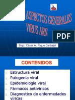 Clase Virus