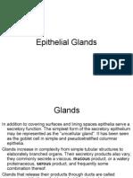Glands05L