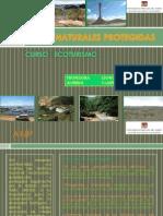 Areas Naturales Protegidas1