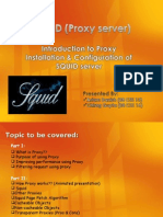 squid-110416132147-phpapp02