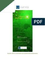 Présentation du Master Biologie-Chimie _ Matériaux et molécules