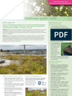 Introduction to Wildflower Green Roofs