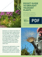 RHS Pocket Guide to Drought Tolerant Plants