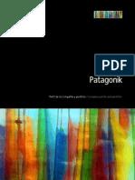 Brochure Patagonik Institucional