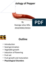 Physiology and physiological disorders of pepper