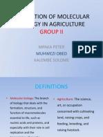 GROUP II Molecular Bio Presentation