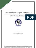 Ankit Pandey_10BM60012_WEKA Term Paper