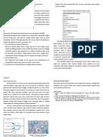 Glomerulonefritis Progresif Cepat Dan Glomerulonefritis Kronik
