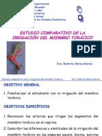 Irrigacion Miembro Toracico-comparada