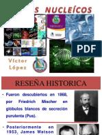 Exposición Ácidos Nucleicos