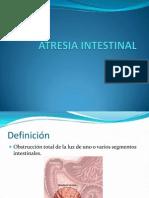 Atresia Intestinal