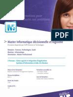 Master que Decisionnelle Et Logicielle (WEBPDF-19653)