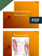 Pruebas Musculares MMII [Modo de ad